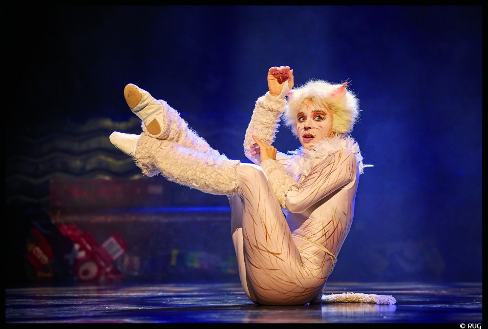 CATS MusicalMogador, Paris Stage Entertainment Franc