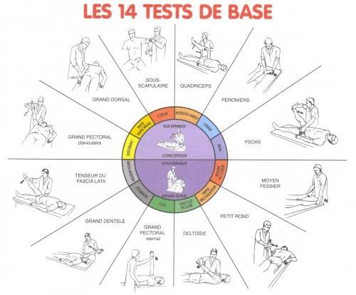 14-tests-de-la-kine